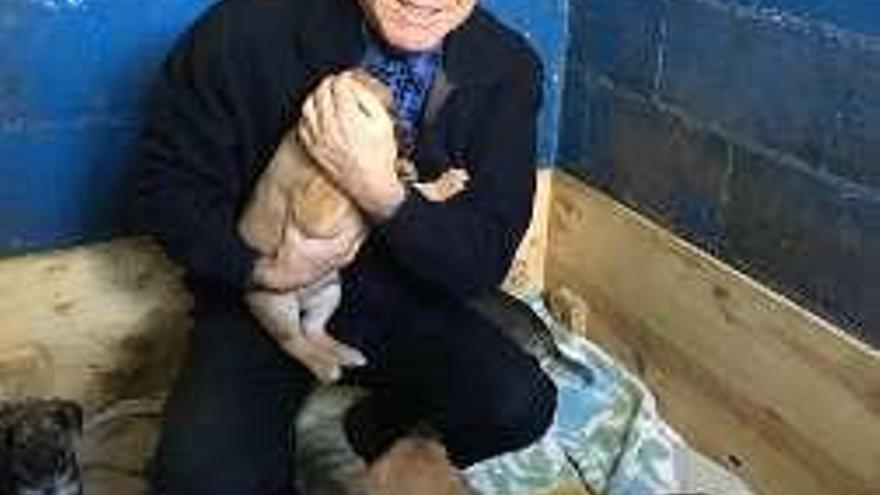 El alcalde de Coirós busca dueños para una camada de perros