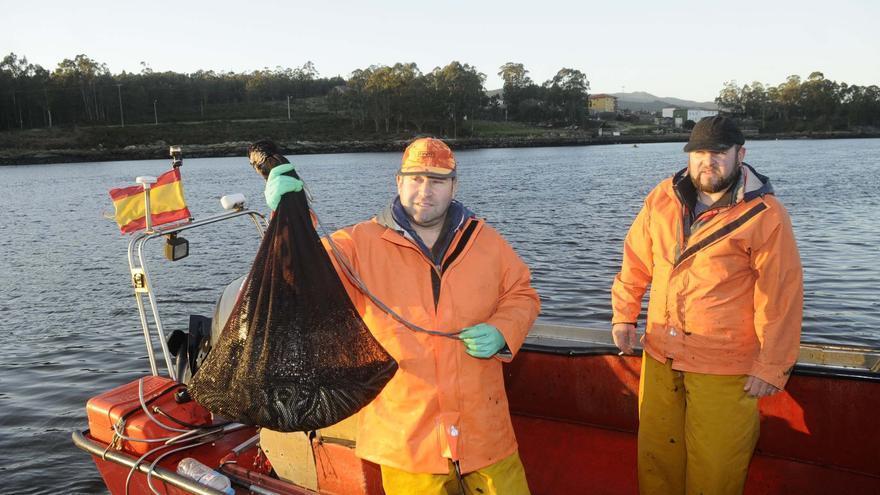 Ya hay plan de trabajo para la pesca de anguila en el Ulla