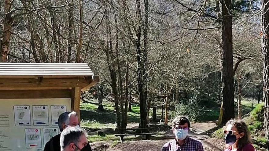 El Ayuntamiento de Candamo acometerá la reordenación y reforestación de Sierra Sollera