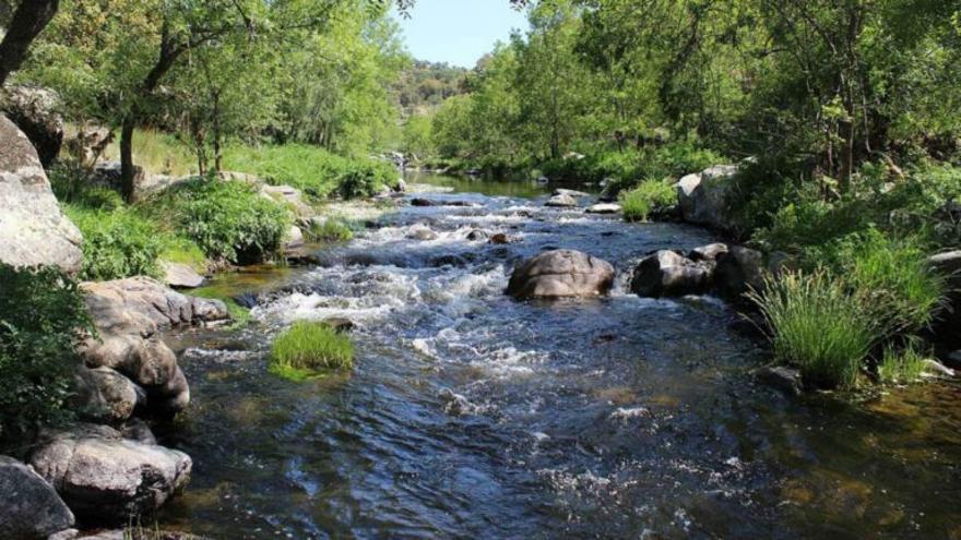 'Filomena' aportó el 5% del total anual de recursos hídricos de España