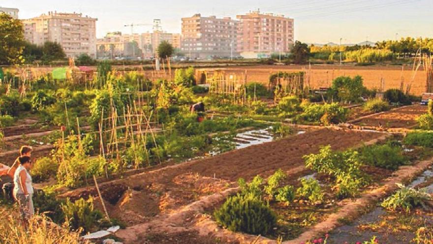 Horts urbans per a ciutats més verdes