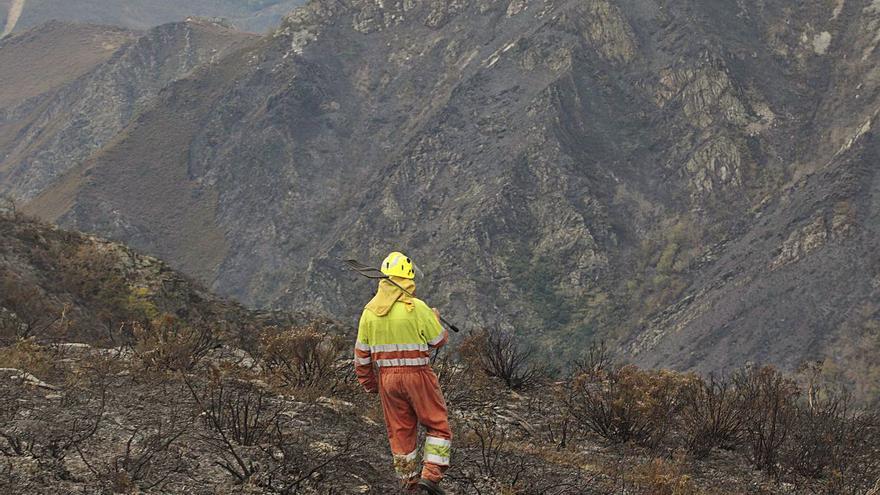 """La """"pandemia"""" de los montes asturianos: hasta 21 investigados por provocar incendios forestales en lo que va de año"""