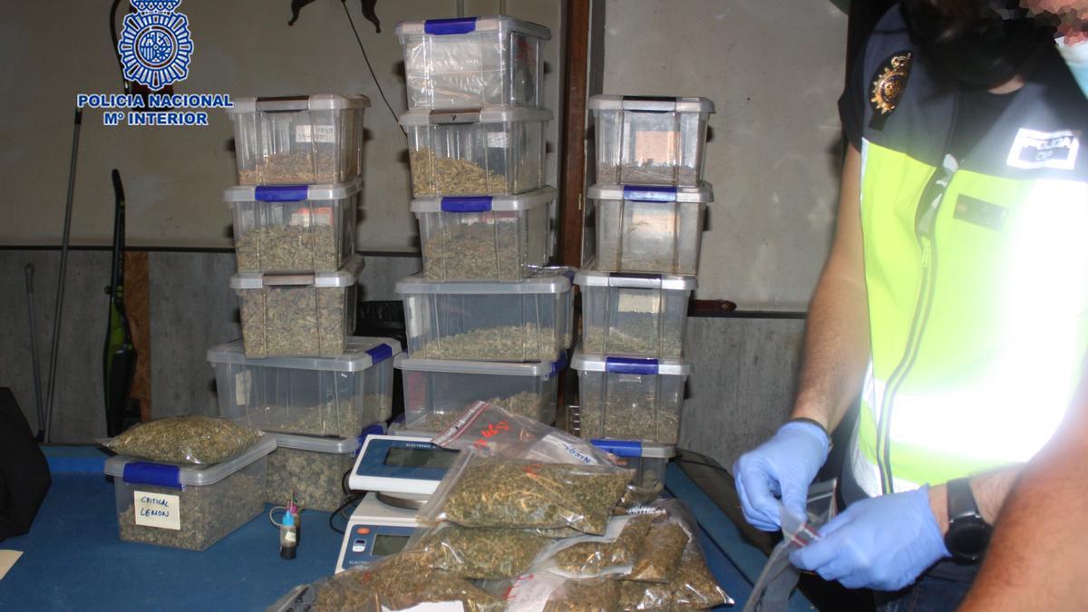 Parte de la droga incautada por los agentes