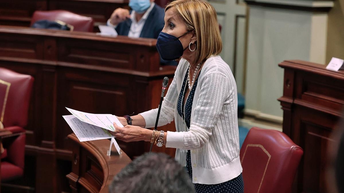 La portavoz del Partido Popular (PP) en el Parlamento autonómico, Australia Navarro
