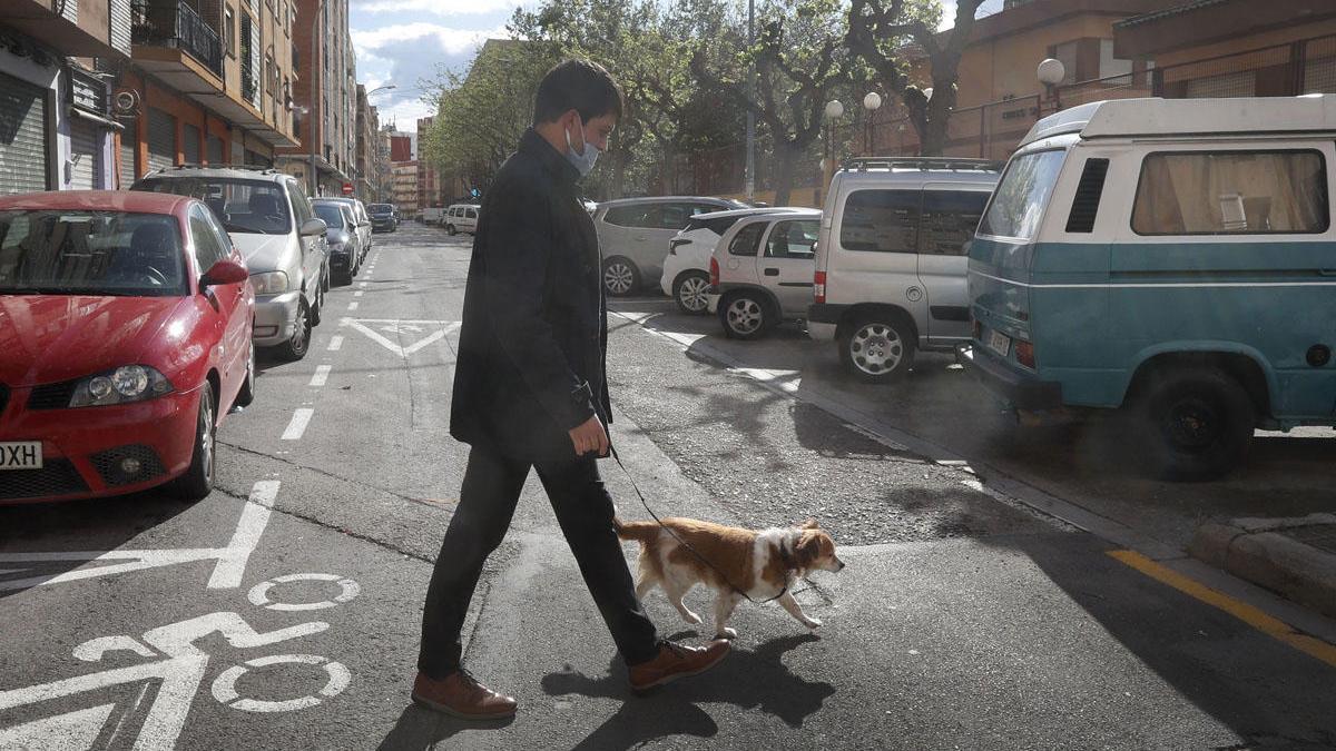 Una persona con mascarilla pasea a un perro en Valencia.