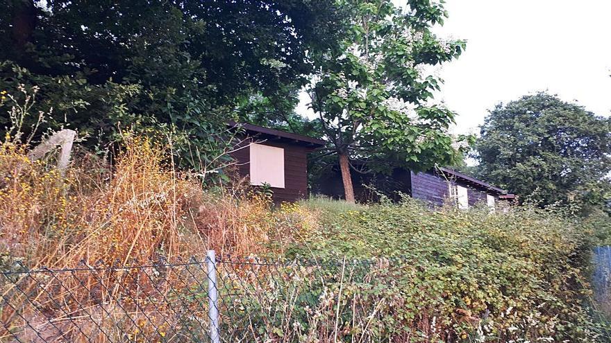 El único camping de la ciudad, cerrado hace 6 años, desmantelado y engullido por la maleza