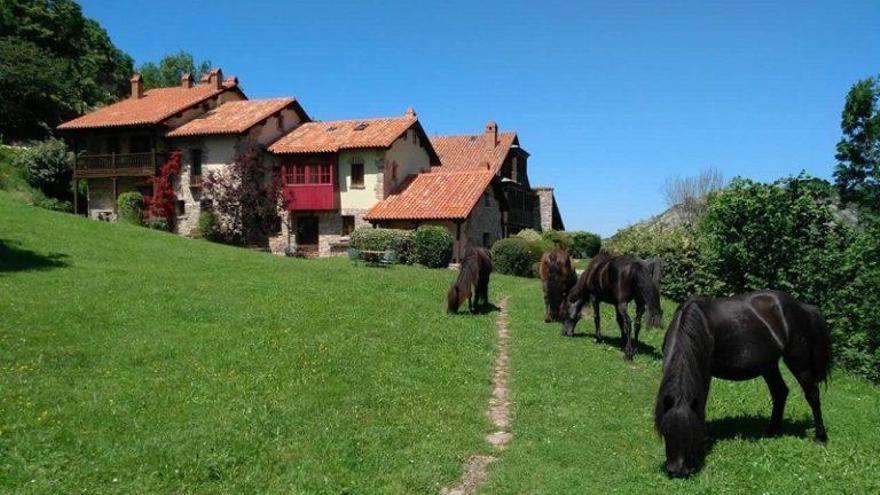 Asturias, líder de ocupación en cámping y casas rurales en agosto