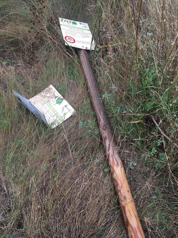 Vandalismo en parajes naturales de Monóvar