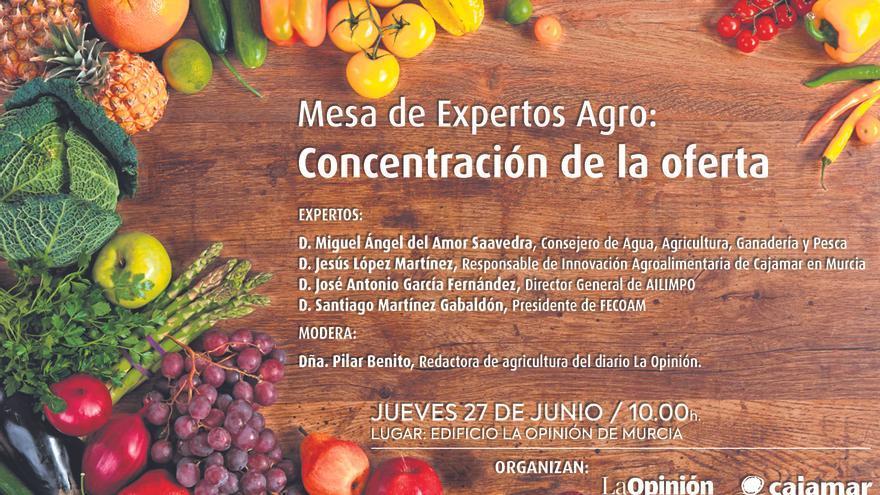 Mesa de Expertos Agro: Concentración de la oferta