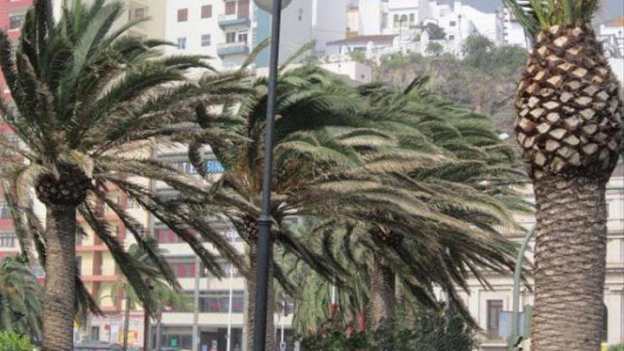 El Hierro, La Gomera, Tenerife y Gran Canaria están este martes en riesgo por fuertes vientos