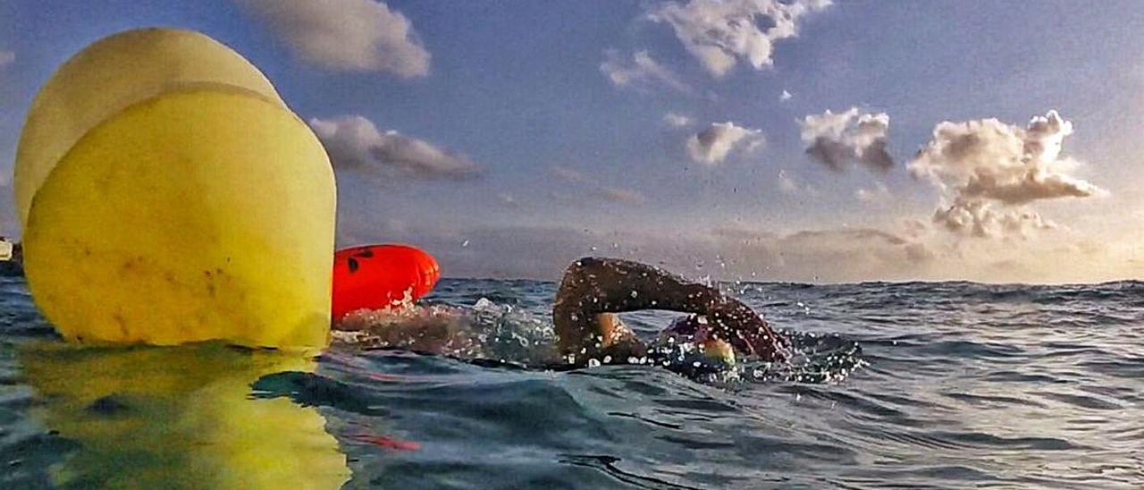 Nadadores proponen balizar distintos tramos entre la playa de San Juan y la Albufereta. |