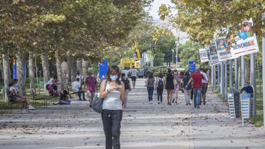 Elecciones en la Universidad de Alicante