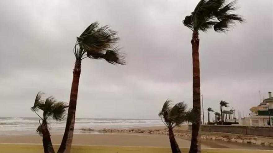 La Comunitat, en alerta por fuertes vientos de hasta 100 km/h
