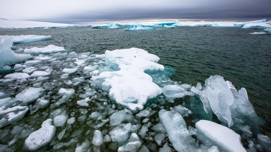 Ártico: emergencia total