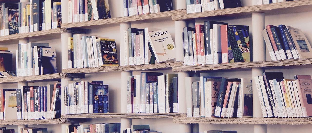 Estanterías con libros de lectura y texto