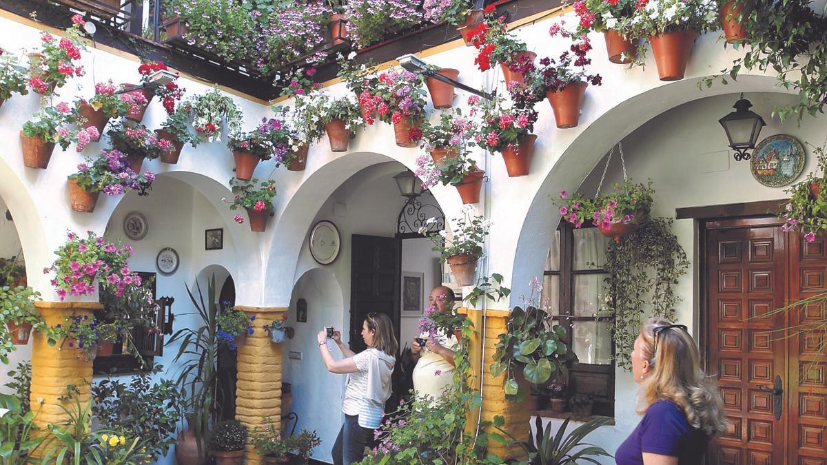 Flores y muros letrados