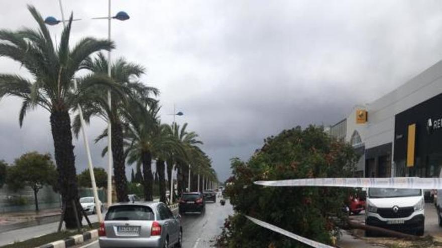 Efectos de la gota fría en La Marina