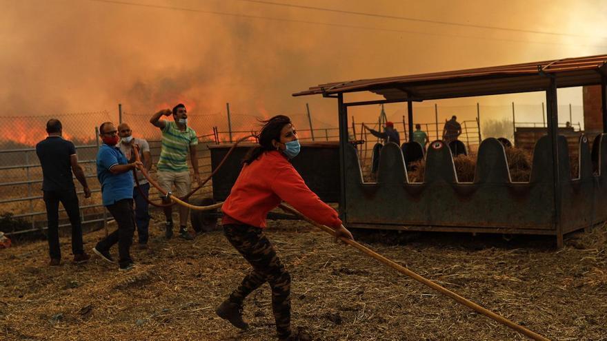 La UME se suma al gran despliegue de medios del incendio forestal de Lober de Aliste