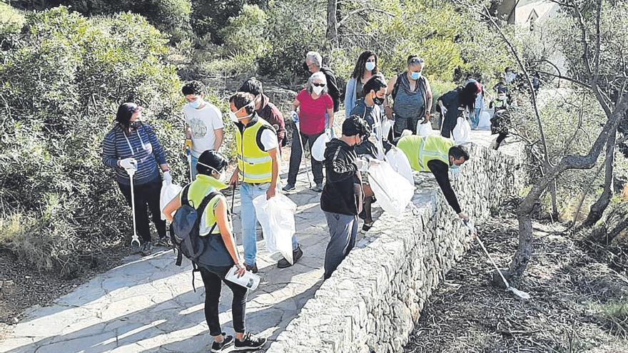 Unas 30 personas limpian el bosque de Bellver