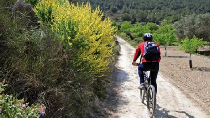 Ruta cicloturística: Torremendo - Pilar de la Horadada