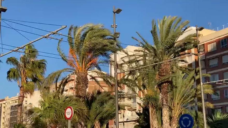 El viento interrumpe el paréntesis de tiempo primaveral en Castellón