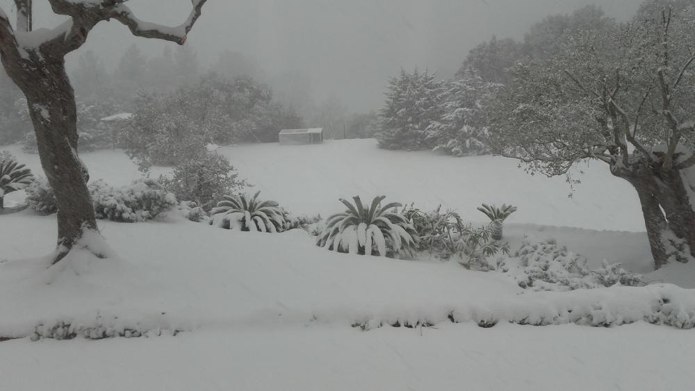 """""""Bei uns gab es am Dienstag (17.1.) 20 Zentimeter Schnee. Wir sind in den Bergen zwischen Bunyola und Orient auf ca.500 m Höhe. Viele Grüße aus dem verschneiten Hotel Rural S'Era Vella."""""""