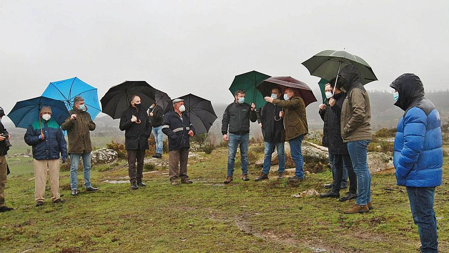 La Xunta recuperará en la provincia 178 hectáreas de pastos en montes vecinales