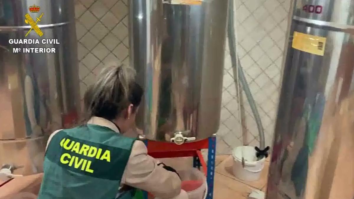 Una agente de la Guardia Civil inspecciona la miel en Balears.