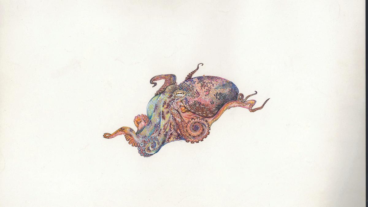 Pelágicos en Canarias de la colección 'Mar de Nómadas', de Sergio Hanquet en la exposición 'Pinceladas de Océano'