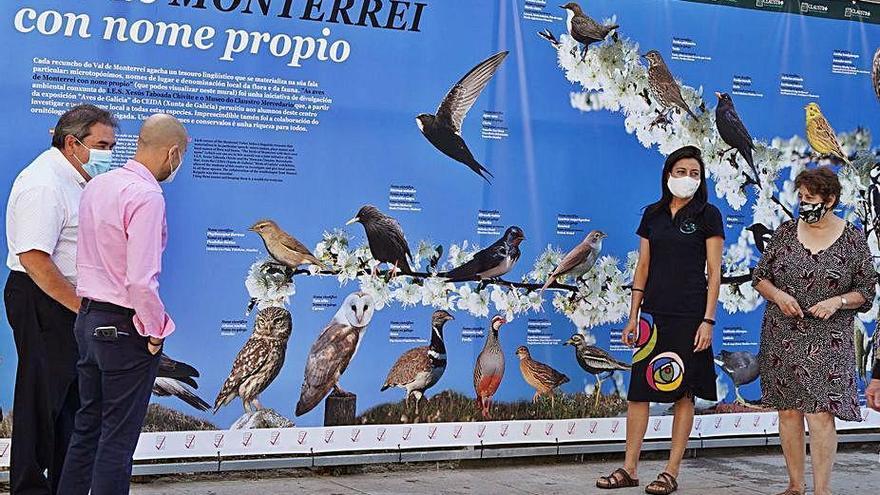 El Museo Mercedario de Verín expone un panel con más de cien nombres autóctonos de aves