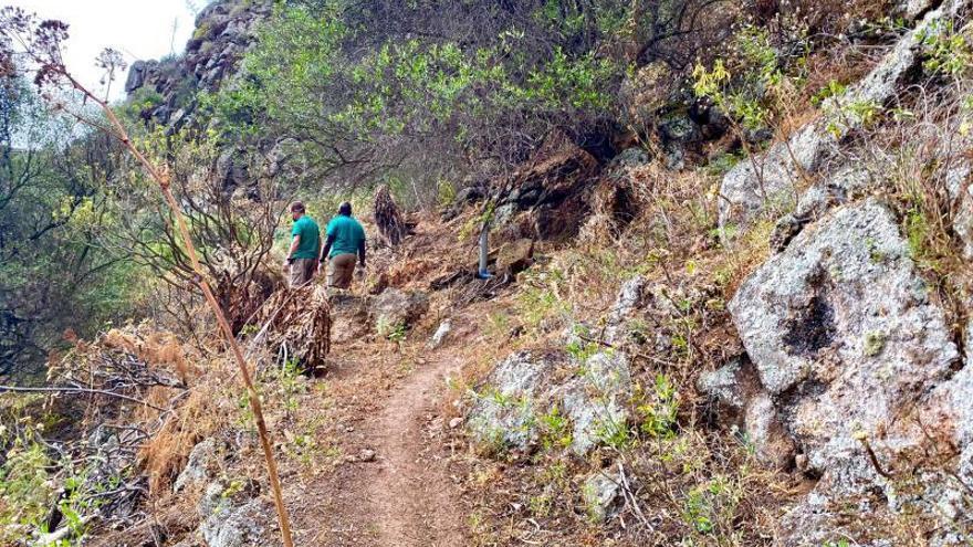 El corredor paisajístico de Tara a la costa estará disponible en octubre
