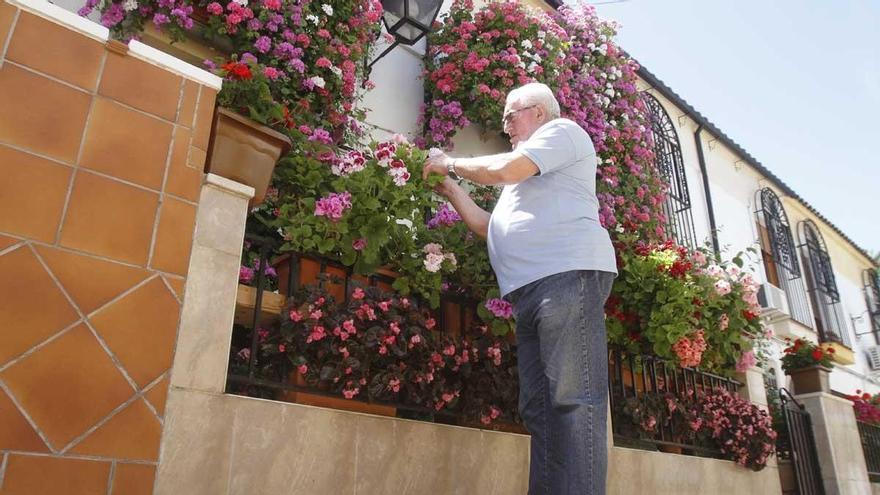 Manuel Soro 'Tinte' 3 vuelve a ganar el concurso de Rejas y Balcones de 2021