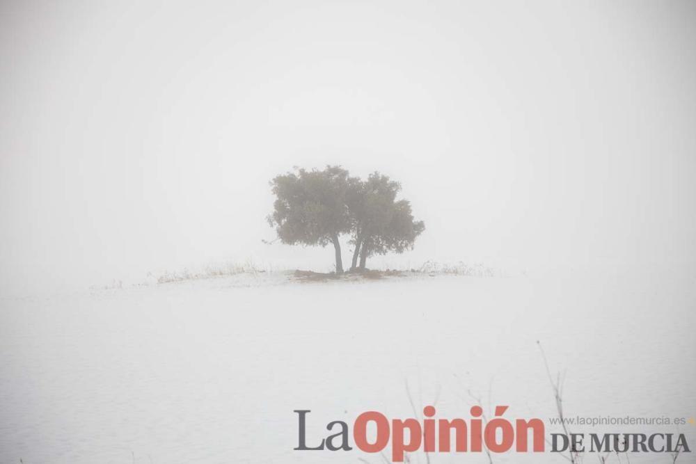 Nieve en la comarca del Noroeste (Pedanía de Los R
