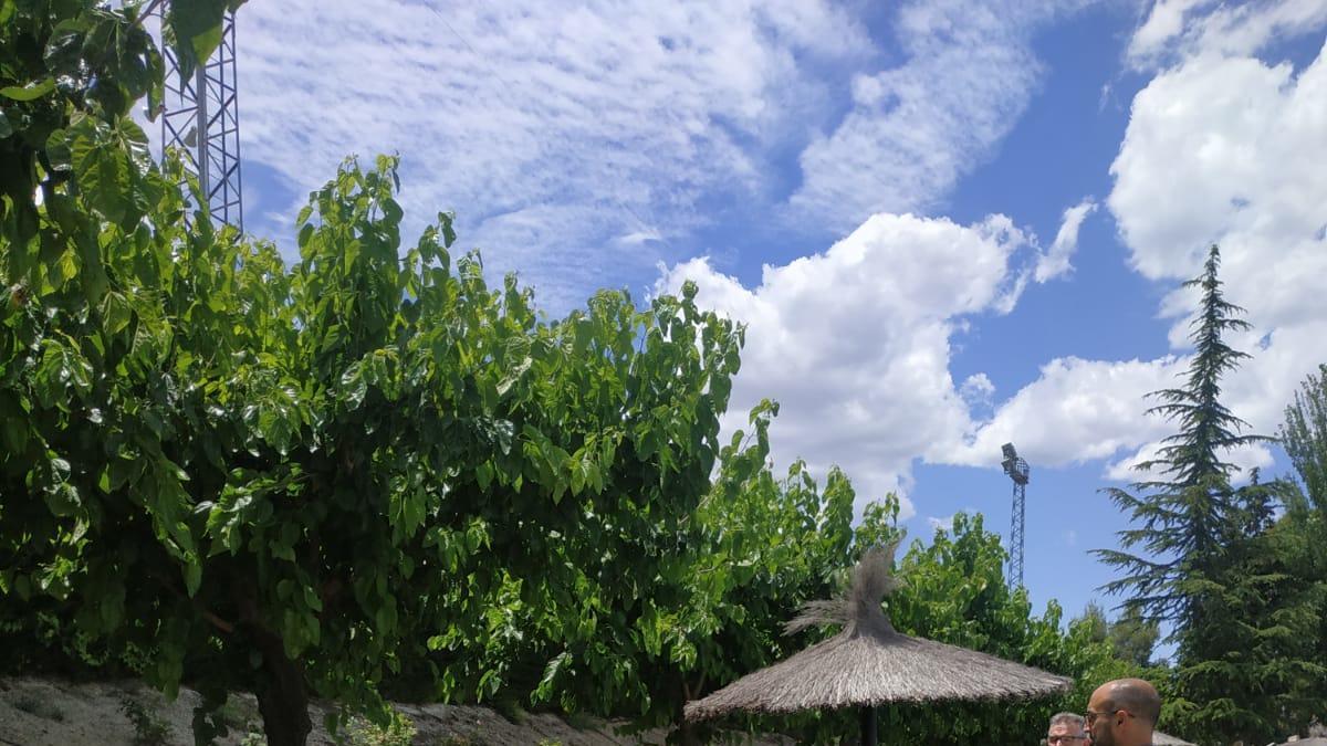 La piscina municipal de Cehegín abre la temporada de verano