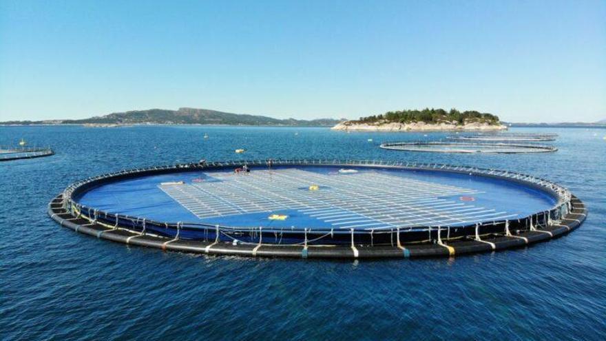 Probarán en Canarias una planta de energía solar flotante