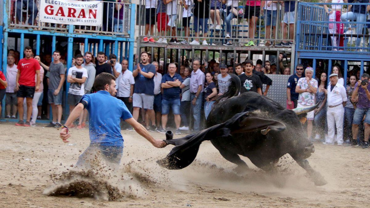 Imagen de archivo de un festejo de bou al carrer