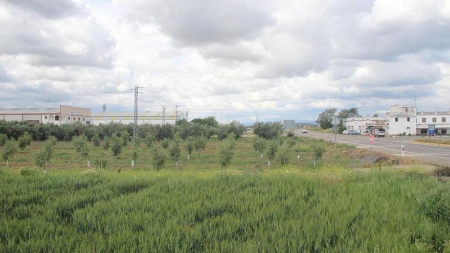 El Pleno de Villafranca da luz verde a un gran centro logístico de transporte de 80.000 metros cuadrados