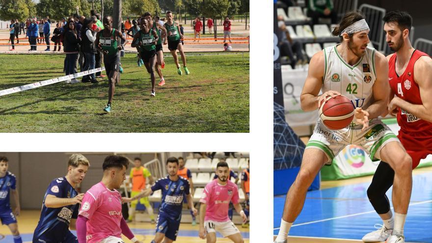 La agenda del fin de semana del deporte de Castellón (23 y 24 de octubre)
