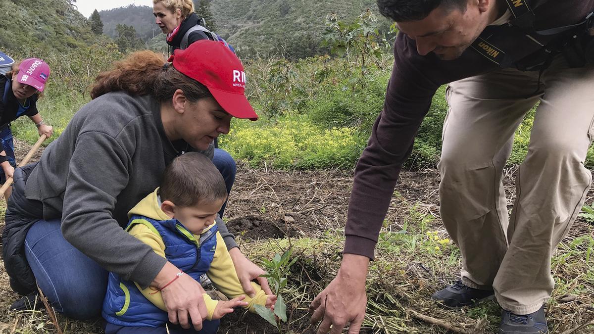 La campaña de regeneración de flora 'Plantamos Conciencias', llevada a cabo por Riu en las islas Canarias.