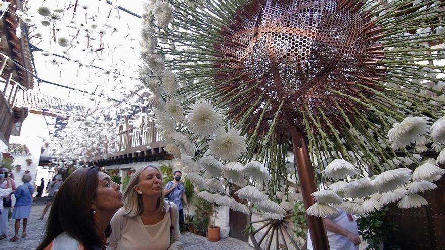 Vuelve Flora Córdoba 2021