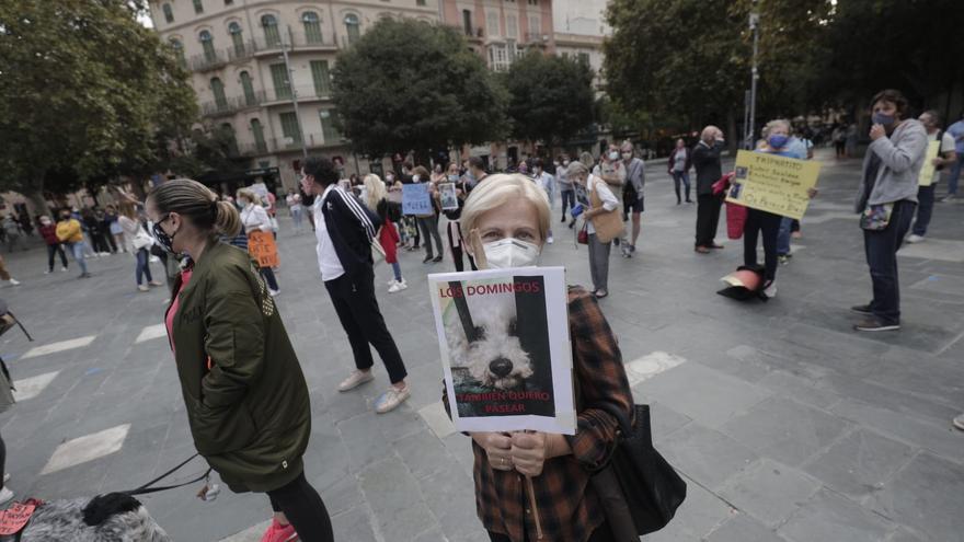 Un centenar de personas se manifiestan por Venus, la perra que falleció en Son Reus