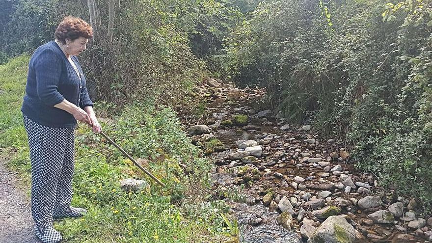 Exigen a la Confederación que limpie el río de Sama, en Grado, por el riesgo de riada