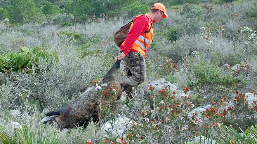 Los cazadores de la Costera y la Vall se suman a la federación y reclaman que se autorice la actividad cinegética
