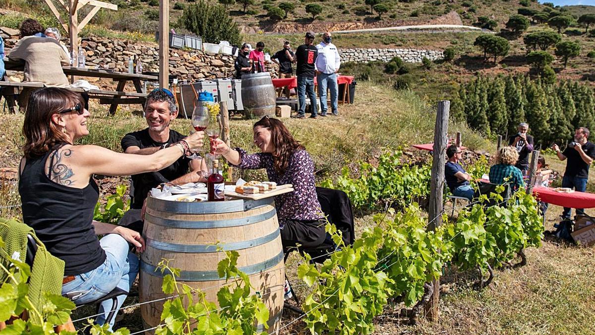 Esmorzar entre vinyes a Colera, en una activitat del Vívid 2021. | XÈNIA GASULL