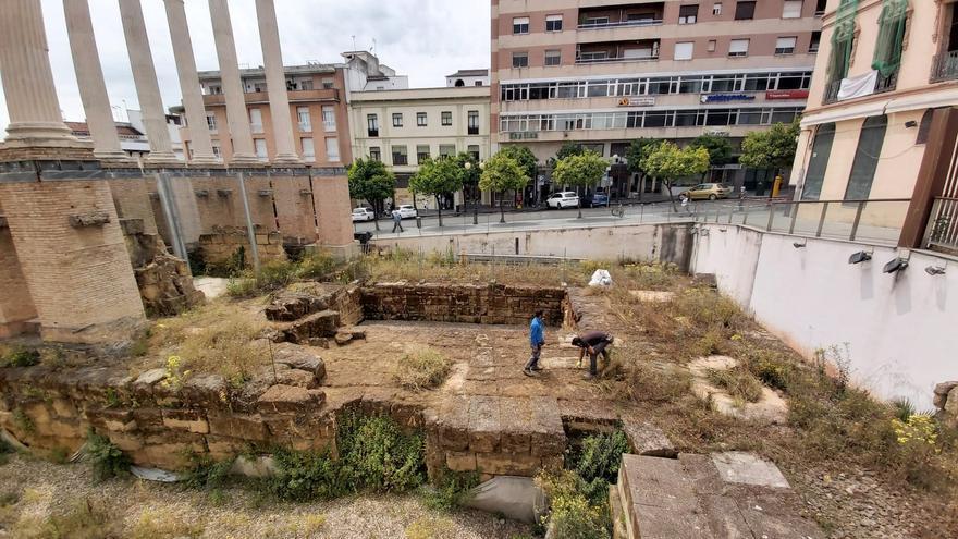 Urbanismo inicia la limpieza del Templo Romano y de la muralla de la plaza del Gamo
