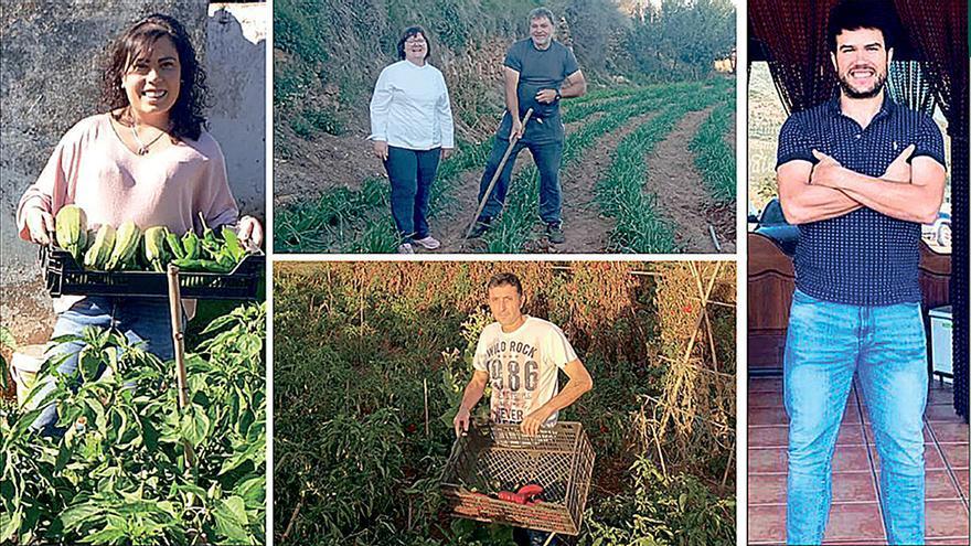 Chefs con huerto propio en Castellón: del campo a la mesa