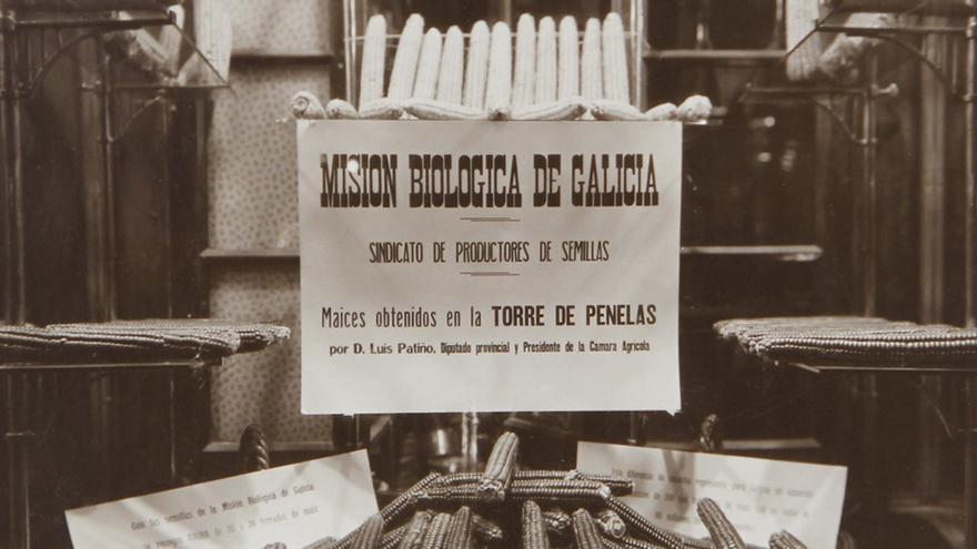Pioneros de la genética en España
