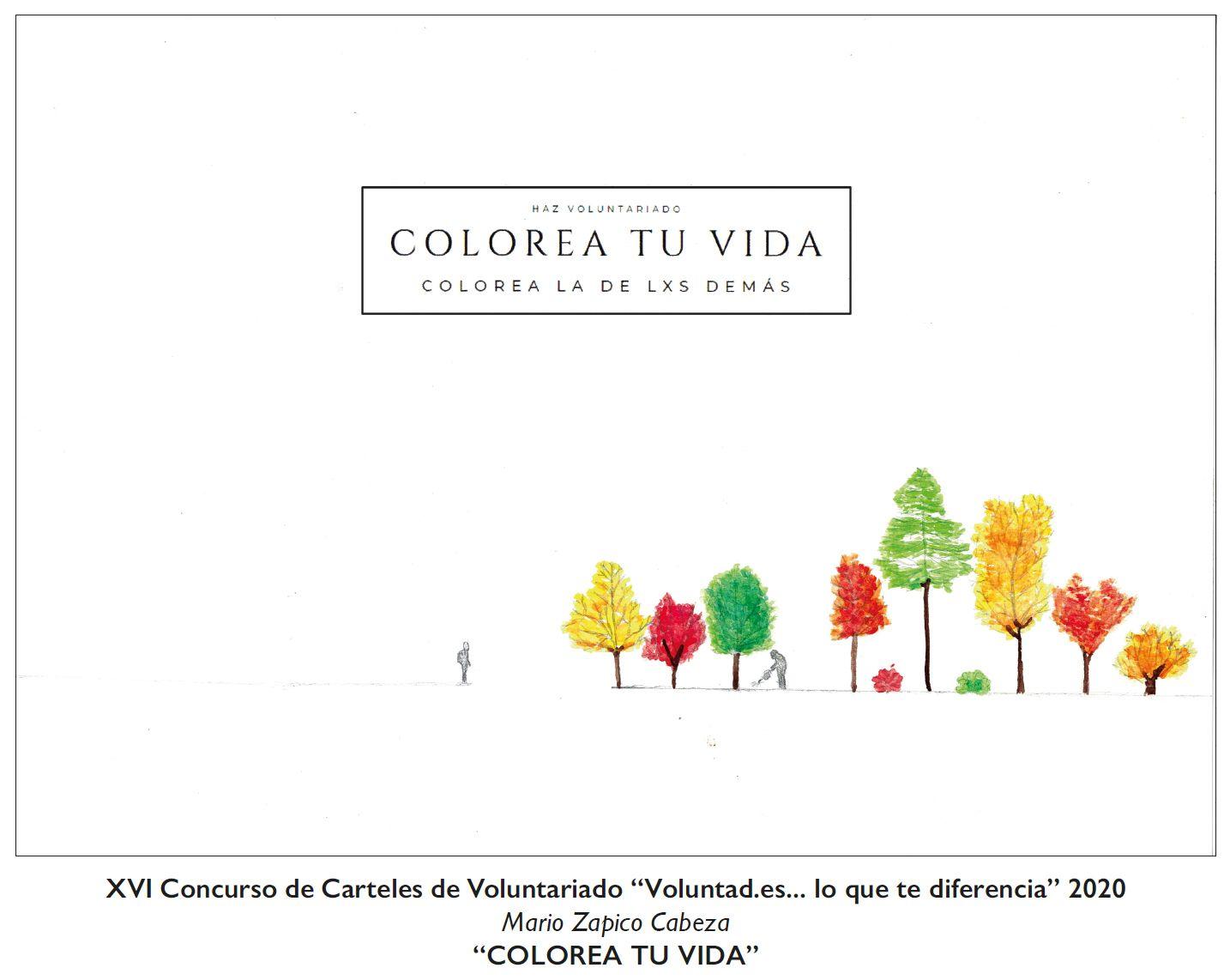 Carteles ganadores del concurso entre estudiantes asturianos por el Día Internacional del Voluntariado