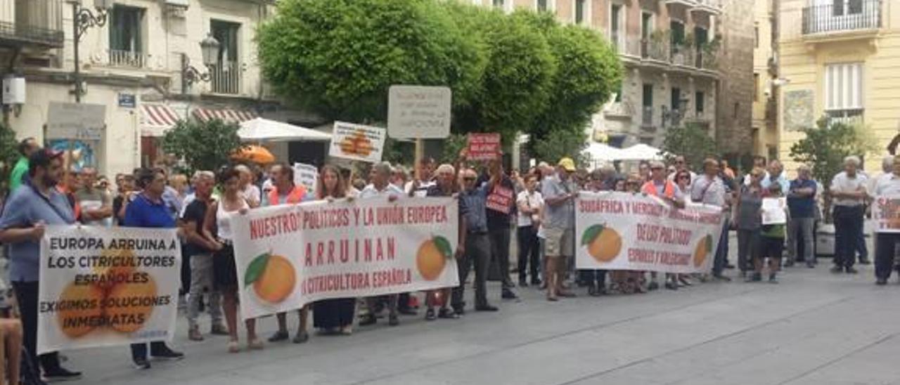 Protesta agrícola en València