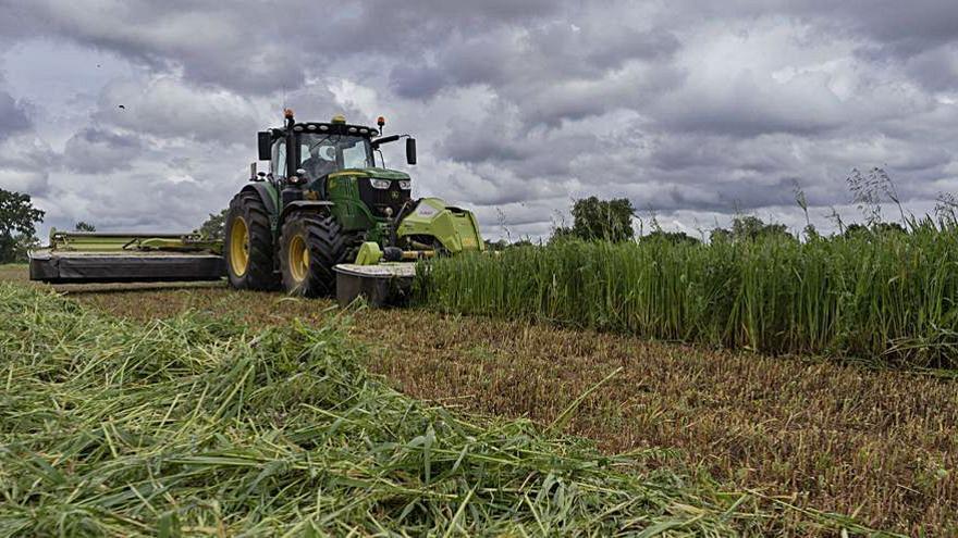 Los agricultores reciben desde este viernes 52,3 millones del primer anticipo PAC
